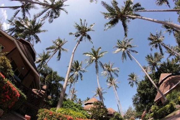 タイとの時差を徹底分析し最高の旅行にする5つのポイント