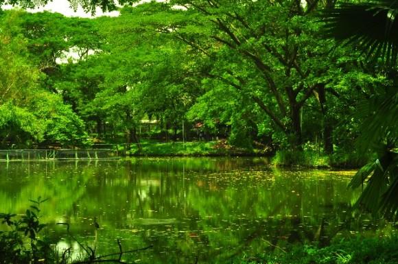 タイの雨季を徹底調査!旅行前に知りたい5つの特徴