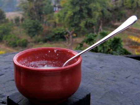 現地で絶対食べたいおすすめネパール料理10選!ダヒ