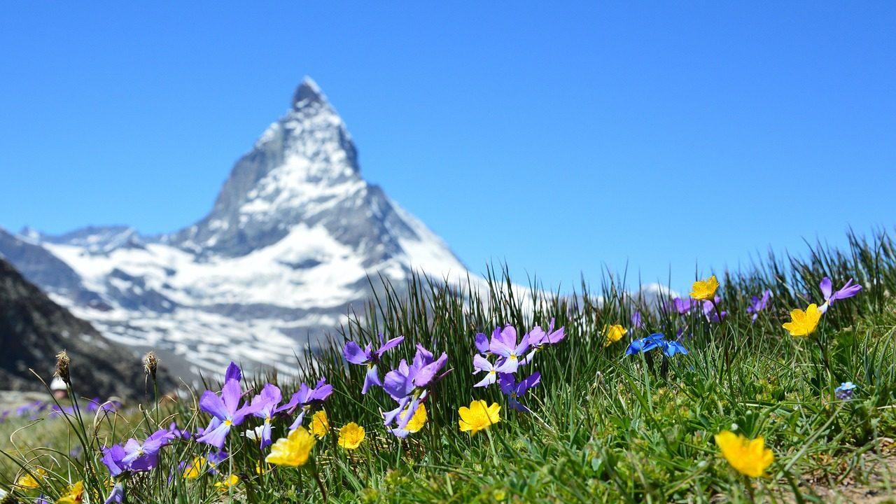 スイスの公用語は英語?旅行前に知るべき8つのポイント