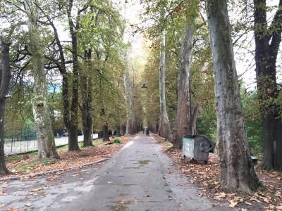 ボスニア首都サラエボのおすすめ観光スポット10選!ブレロボスネ