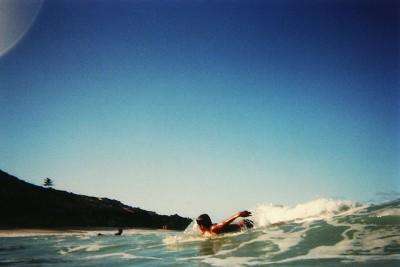 ブラジルに来たら絶対訪れてほしいおすすめビーチ8選!ドルフィンズ ベイ