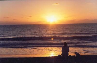 ブラジルに来たら絶対訪れてほしいおすすめビーチ8選!プライア・ドス・カルネイロス
