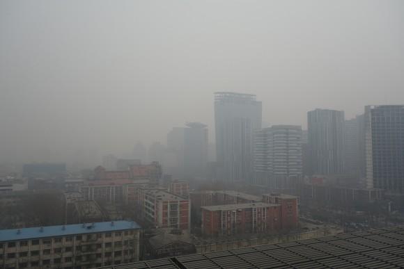 中国で花粉症は?中国人の6つのアレルギー事情!
