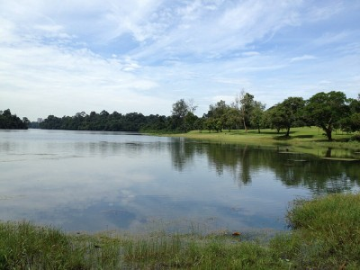 シンガポール在住者のおすすめマニアック観光スポット8選!マクリッチ貯水池