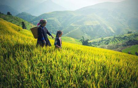 ベトナム人大好き!友達を励ますとき役立つベトナム語15選!1