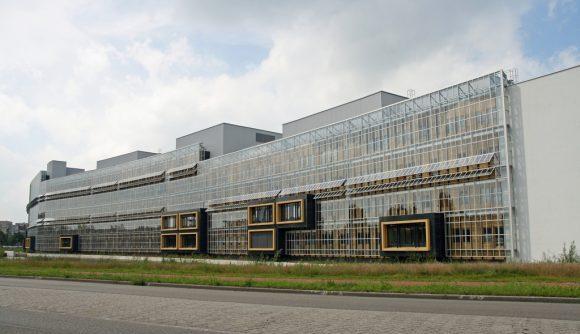 オランダのインフルエンザや風邪にまつわる6つの豆知識!