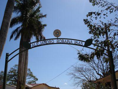 キューバ旅行で絶対行きたいおすすめ観光スポット7選!タバコプランテーション