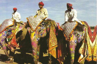 1月、2月、3月のインド国内おすすめイベント特集!ジャイプール・エレファント・フェスティバル