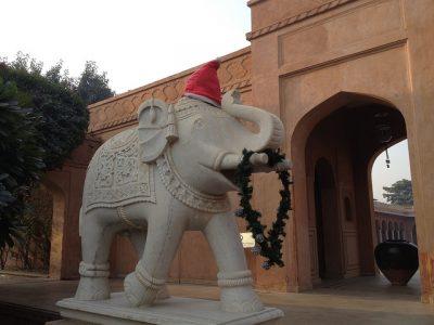 10月、11月、12月のインド国内おすすめイベント特集!クリスマス