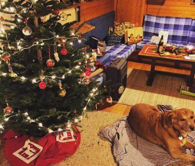 オーストリアのクリスマスはどんな感じ?6つのおもしろ豆知識!ホーム