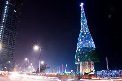 スリランカのクリスマスはどんな感じ?6つのおもしろ豆知識!ツリー