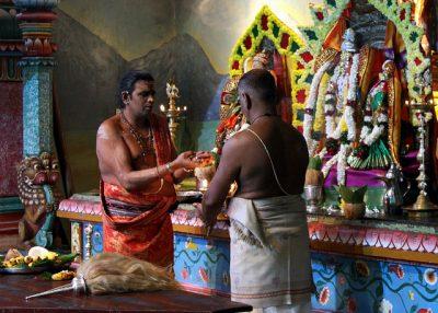 1月、2月、3月のスリランカ国内おすすめイベント特集!タミル豊穣祭