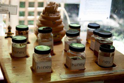 デンマークのお土産調査!貰って嬉しい超おすすめ10選!ハチミツ