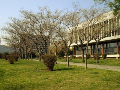 ギリシャの人気大学を現地調査!7つのおすすめ役立ち情報!テッサロニキ・アリストテレス大学