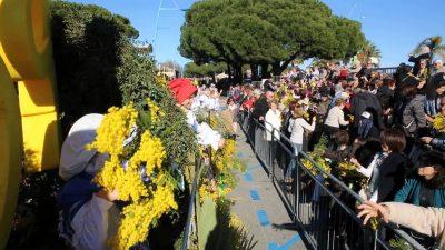フランスの1月、2月、3月おすすめ人気イベント特集!ミモザ祭り