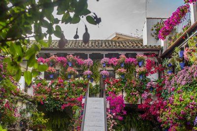 スペインの4月、5月、6月おすすめ人気イベント特集!パティオ祭り