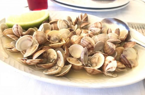 スペインのマラガで絶対行きたいおすすめ人気レストラン10選!