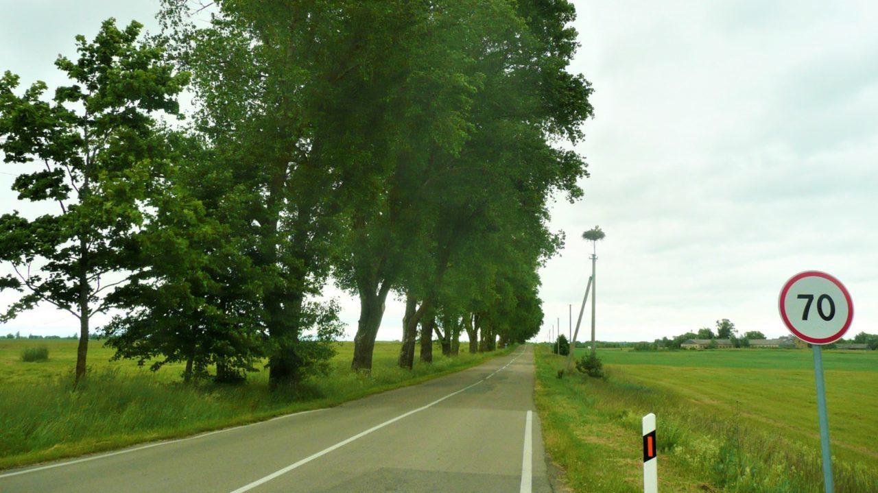 リトアニアのシェアサイクル!現地で自転車をお得にレンタルする7つのコツ!